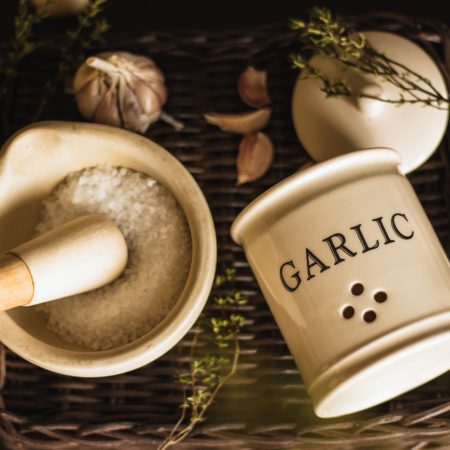 Garlic and Salt and Natural Insectisides