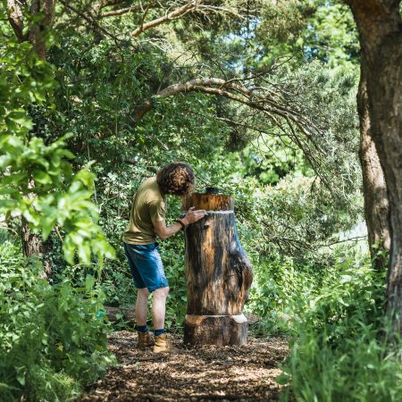 Man building the Log Beehive for bee conservation