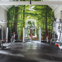 Combe Grove Gym in Bath - Nature inspired wall mural design